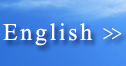 Go to English site